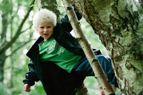 Why Forest School - developing
